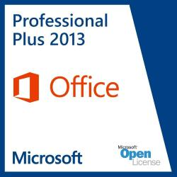 Microsoft Office 2013 Proplus Sngl Olp