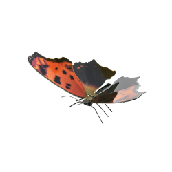 Metal Earth Eastern Comma Butterfly