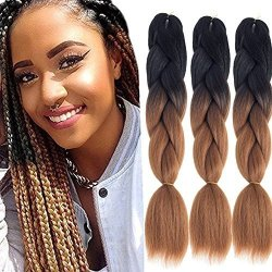 Dingxiu 3packs 24inch Ombre Braiding