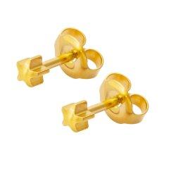 MEDISYSTEM - Surgical Steel Gold Star Stud Earring