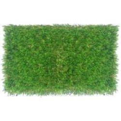 Evergreen Press Evergreen Artificial Grass 1 Tone 25MM2.00 X 5.00