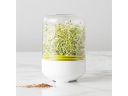 Chef'N Countertop Sprouter Growing Kit
