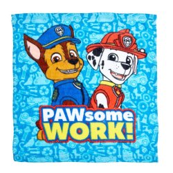Character - Facecloth Paw Patrol