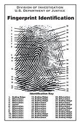 Crime Scene Fingerprint Chart