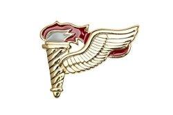 Pathfinder Badge MINI Us Army