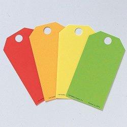 Blank Tag 5-3 4 X 3 In Cardstock PK25