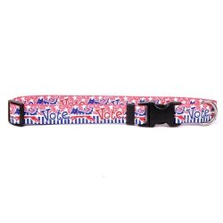 """Yellow Dog Design Voter Dog Dog Collar With Tag-a-long Id Tag SYSTEM-MEDIUM-3 4"""" And Fits Neck 14 To 20"""" 4"""