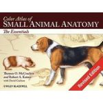 Color Atlas of Small Animal Anatomy: The Essentials by Thomas O. McCracken
