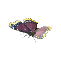 Metal Earth Mourning Cloak Butterfly