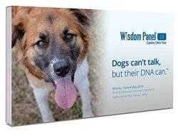 Wisdom Health Wisdom Panel 3.0 Breed Identification Dna Test Kit