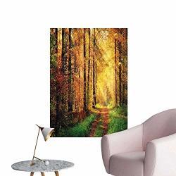 "Wall Decoration Wall Stickers Scenery Rays Warm Lights Shady Tre Woods Yellow Green Print Artwork 20""W X 32""L"