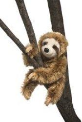 Douglas Simon Sloth