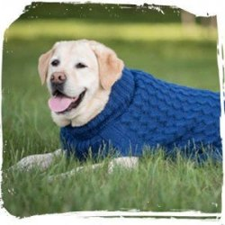 "HDP Alpaca Wool Hand Made ""blueglue"" Dog Sweater Color:blue Size:xlarge"