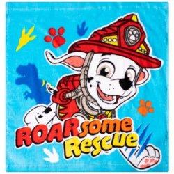 Paw Patrol Boys Face Cloth Blue