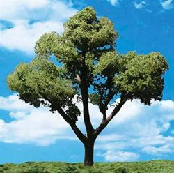 "USA Classics Tree Early Light .75-1.25"" 8"