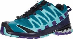 Salomon Xa Pro 3D V8 GTX Women's Trail Running Hiking Shoe Shaded Spruce evening Blue meadowbrook 9.5 B M