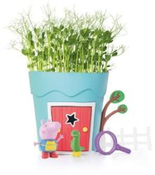 Peppa Pig - Growing George Pot Plant