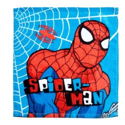 Character - Facecloth Spiderman