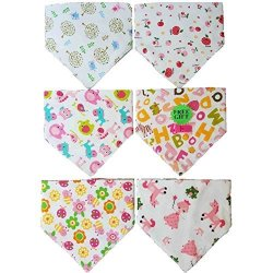 Bib Drool Bandanas 6 Fun-to-wear Prettiest Girls Bandanas With Clip